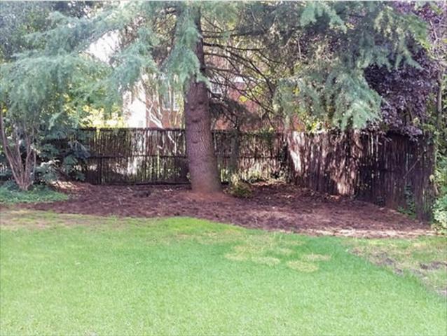 Sandown property to rent. Ref No: 13255701. Picture no 4